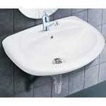 Wash Basin - 22x16 Repose